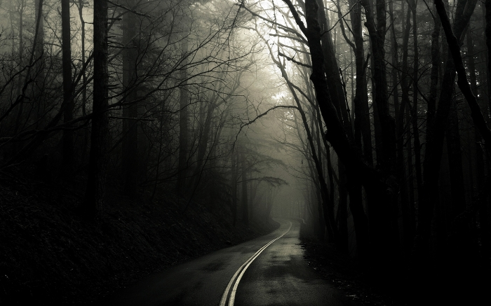 normal_Scary-Forest-Road-1440x900